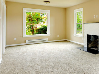 Carpet<br/> and Rugs